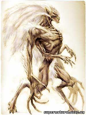 Wendigo supernatural drawing